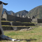 4 Day Machu Picchu Trek: The Ultimate Peru Adventure