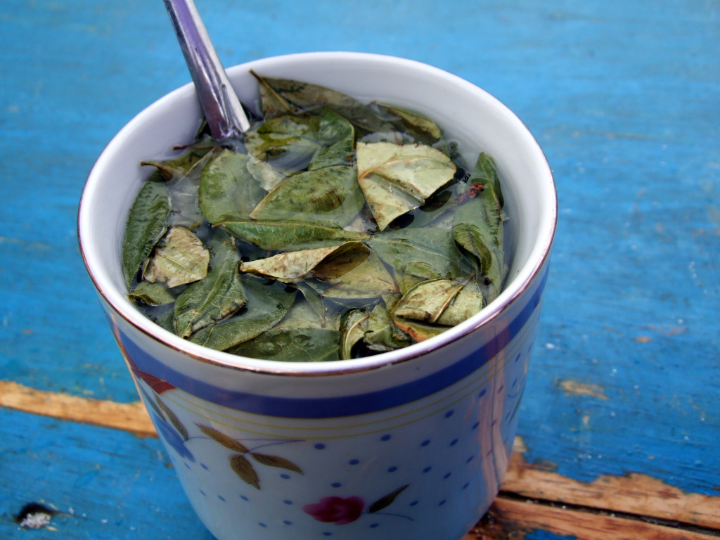 mate de coca - Peruvian drinks